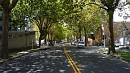 Mendozai utóérzés Auckland belvárosának közelében.