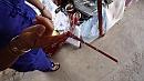 Vietnami szuvenír, avagy a kiegyensúlyozott szitakötõ.