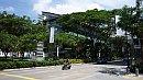 Szingapúr tetszõlegesen választott utcája, figyeljék a zöldet!