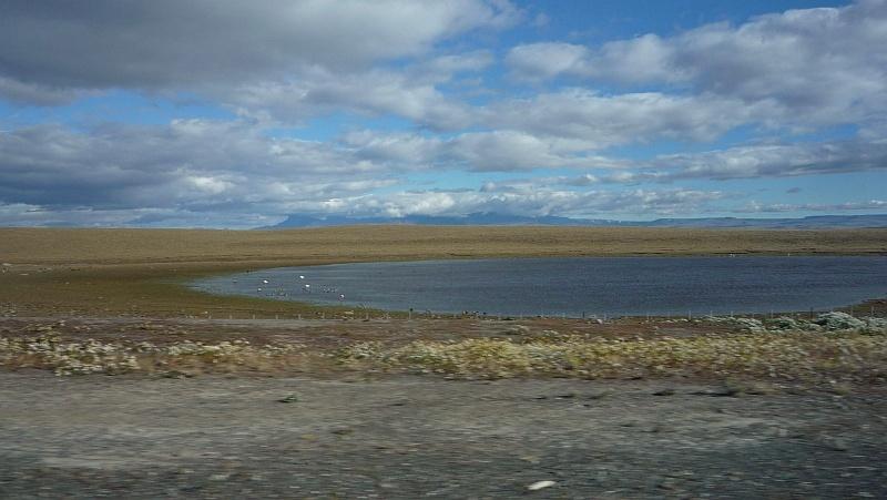 A tó szélén flamingók állnak egyik lábukról a másikra